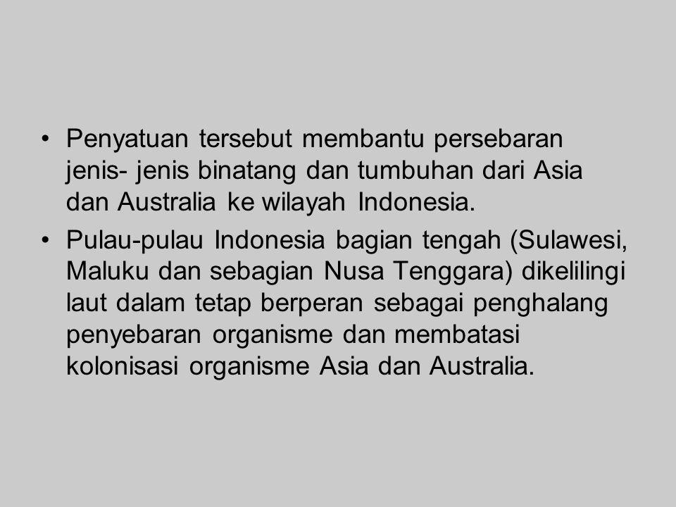 Penyatuan tersebut membantu persebaran jenis- jenis binatang dan tumbuhan dari Asia dan Australia ke wilayah Indonesia.