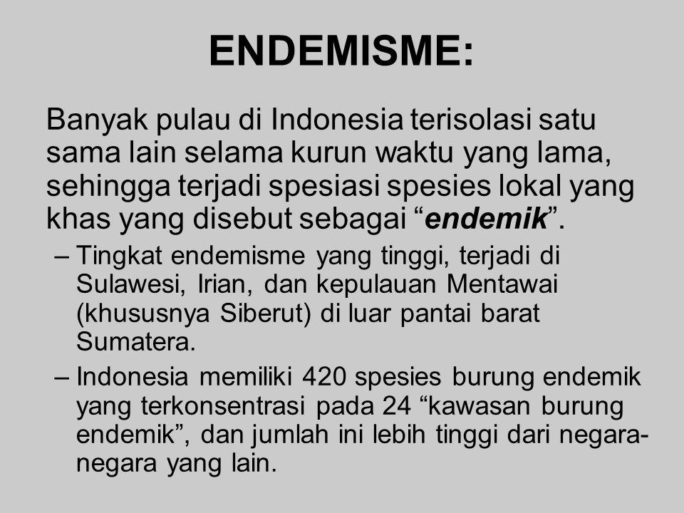 ENDEMISME: