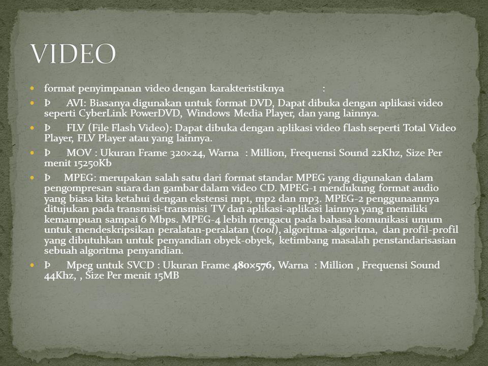 VIDEO format penyimpanan video dengan karakteristiknya :