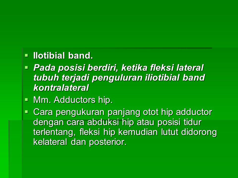 Ilotibial band. Pada posisi berdiri, ketika fleksi lateral tubuh terjadi penguluran iliotibial band kontralateral.