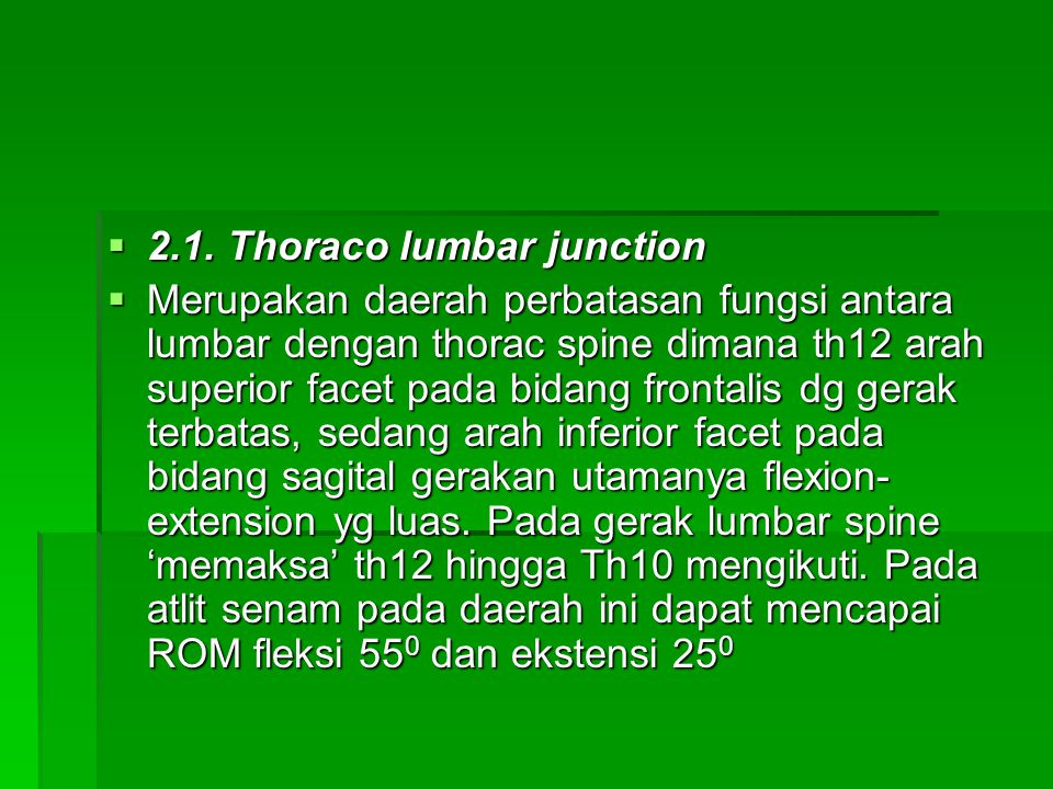 2.1. Thoraco lumbar junction