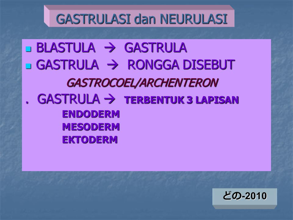 GASTRULASI dan NEURULASI
