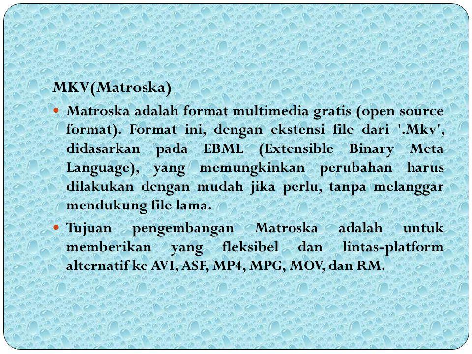 MKV(Matroska)
