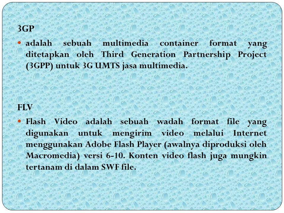 3GP adalah sebuah multimedia container format yang ditetapkan oleh Third Generation Partnership Project (3GPP) untuk 3G UMTS jasa multimedia.