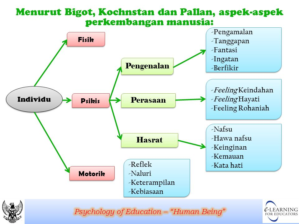 Menurut Bigot, Kochnstan dan Pallan, aspek-aspek perkembangan manusia: