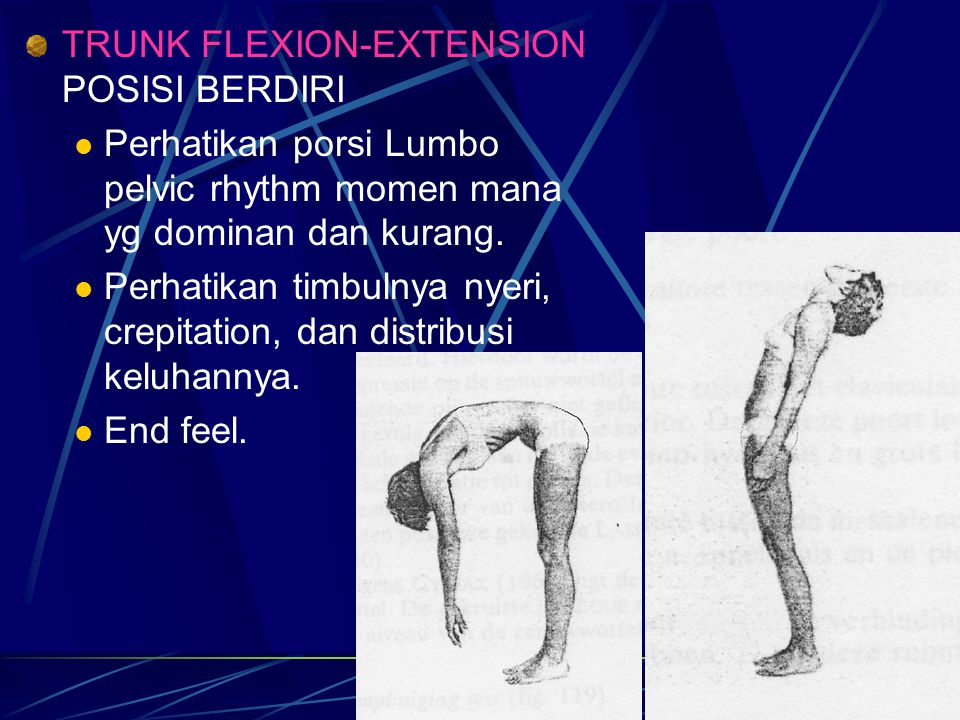 TRUNK FLEXION-EXTENSION POSISI BERDIRI