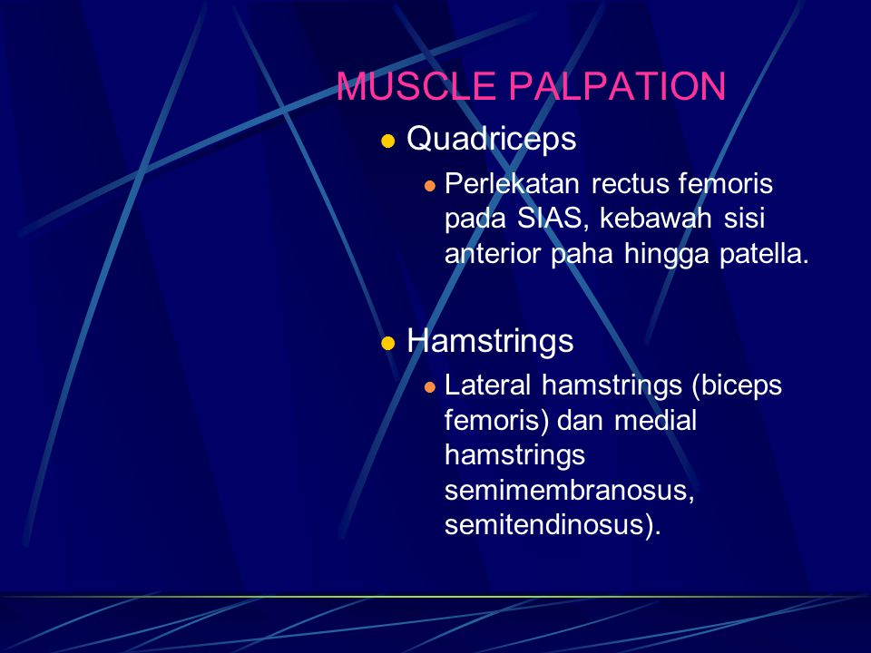 MUSCLE PALPATION Quadriceps Hamstrings