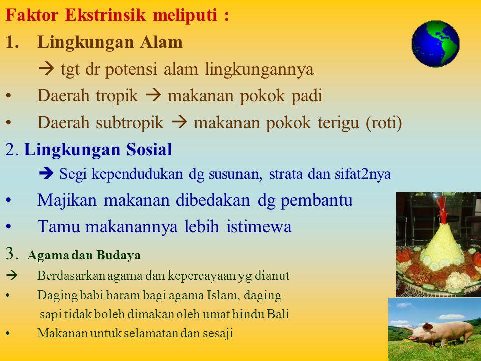 Faktor Ekstrinsik meliputi : Lingkungan Alam