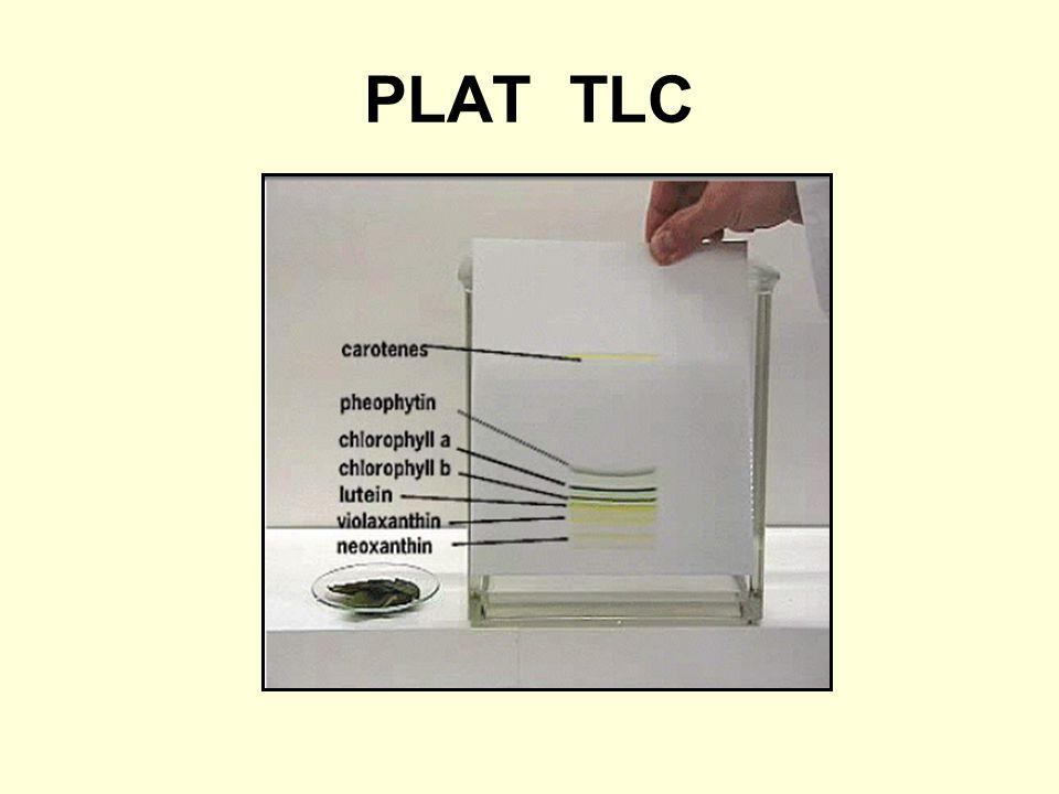 PLAT TLC