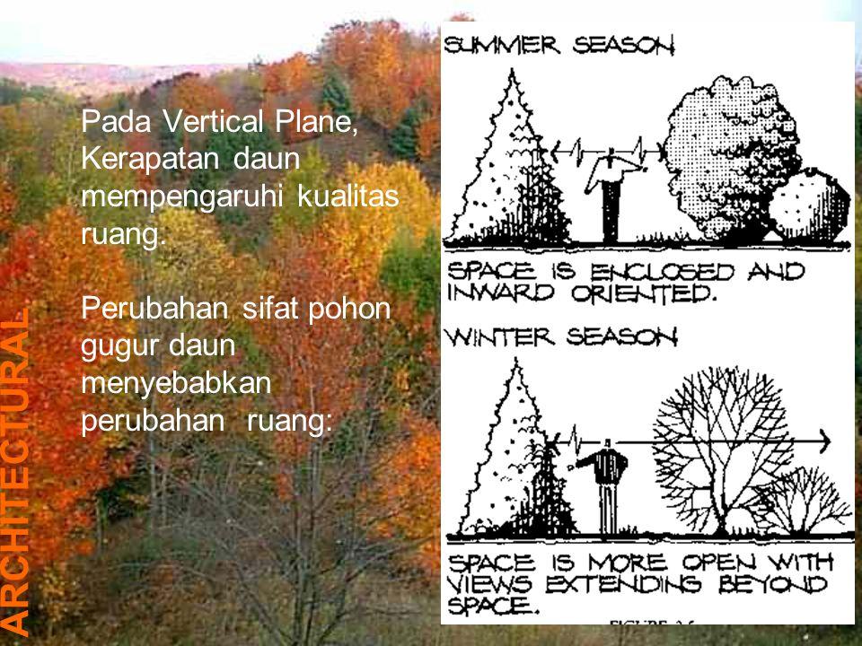 Pada Vertical Plane, Kerapatan daun mempengaruhi kualitas ruang