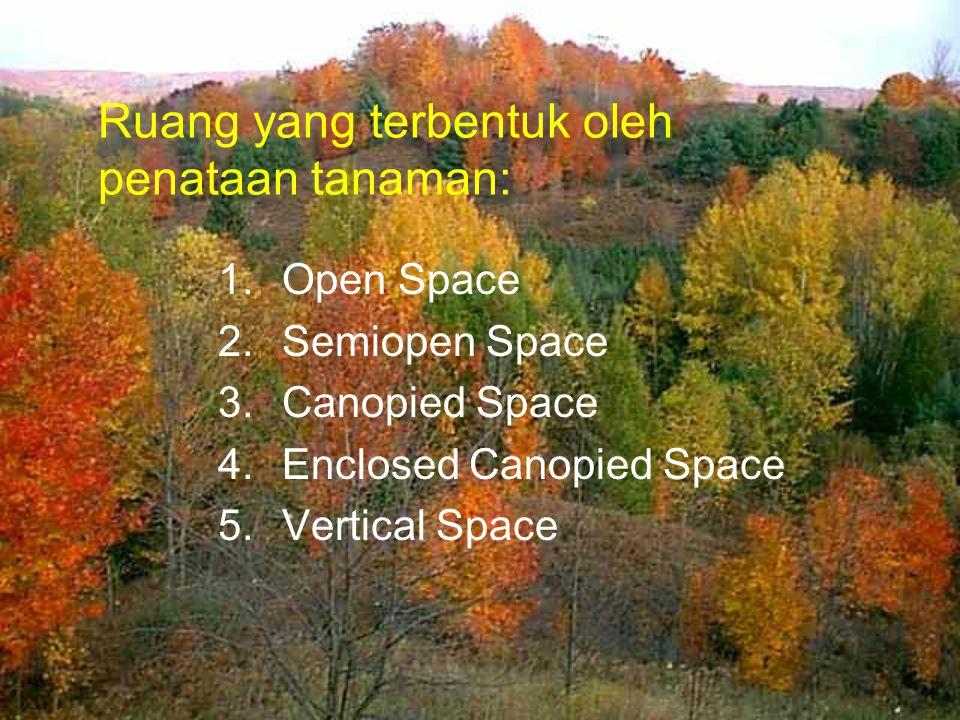 Ruang yang terbentuk oleh penataan tanaman: