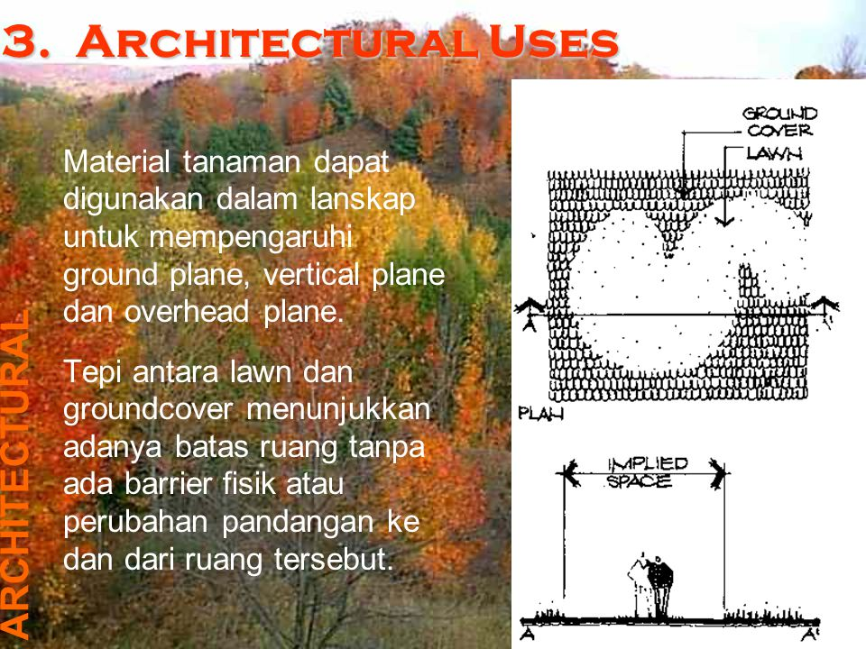3. Architectural Uses ARCHITECTURAL
