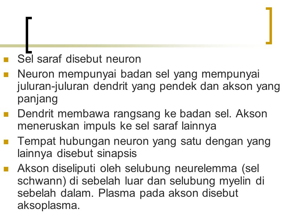 Sel saraf disebut neuron