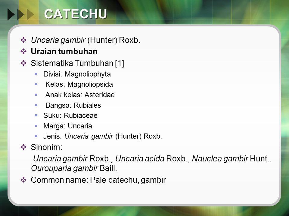 CATECHU Uncaria gambir (Hunter) Roxb. Uraian tumbuhan