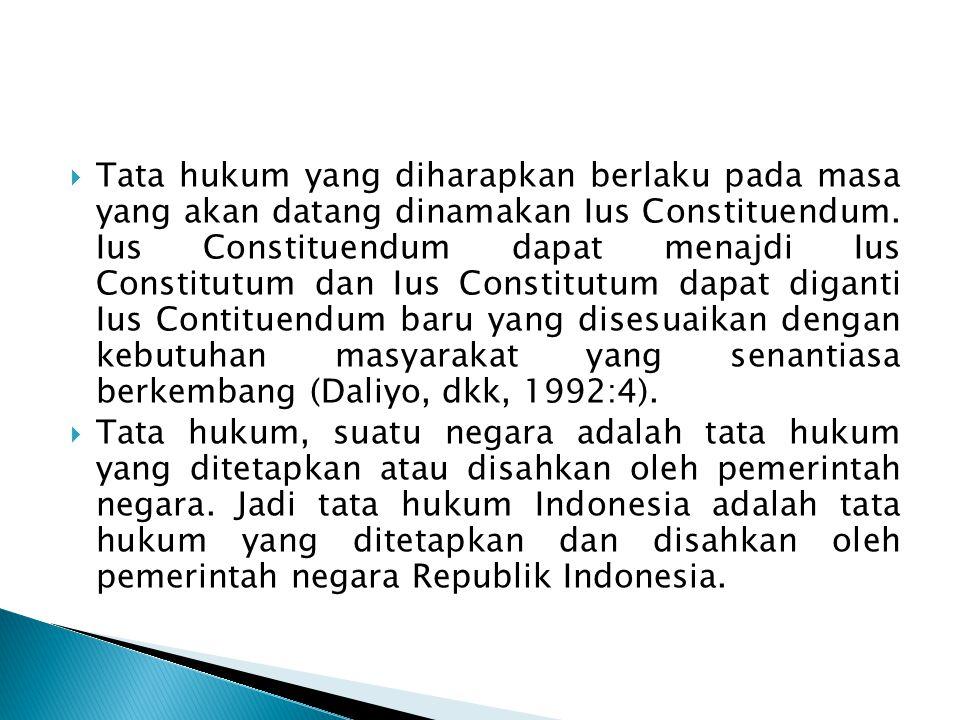 Tata hukum yang diharapkan berlaku pada masa yang akan datang dinamakan Ius Constituendum. Ius Constituendum dapat menajdi Ius Constitutum dan Ius Constitutum dapat diganti Ius Contituendum baru yang disesuaikan dengan kebutuhan masyarakat yang senantiasa berkembang (Daliyo, dkk, 1992:4).