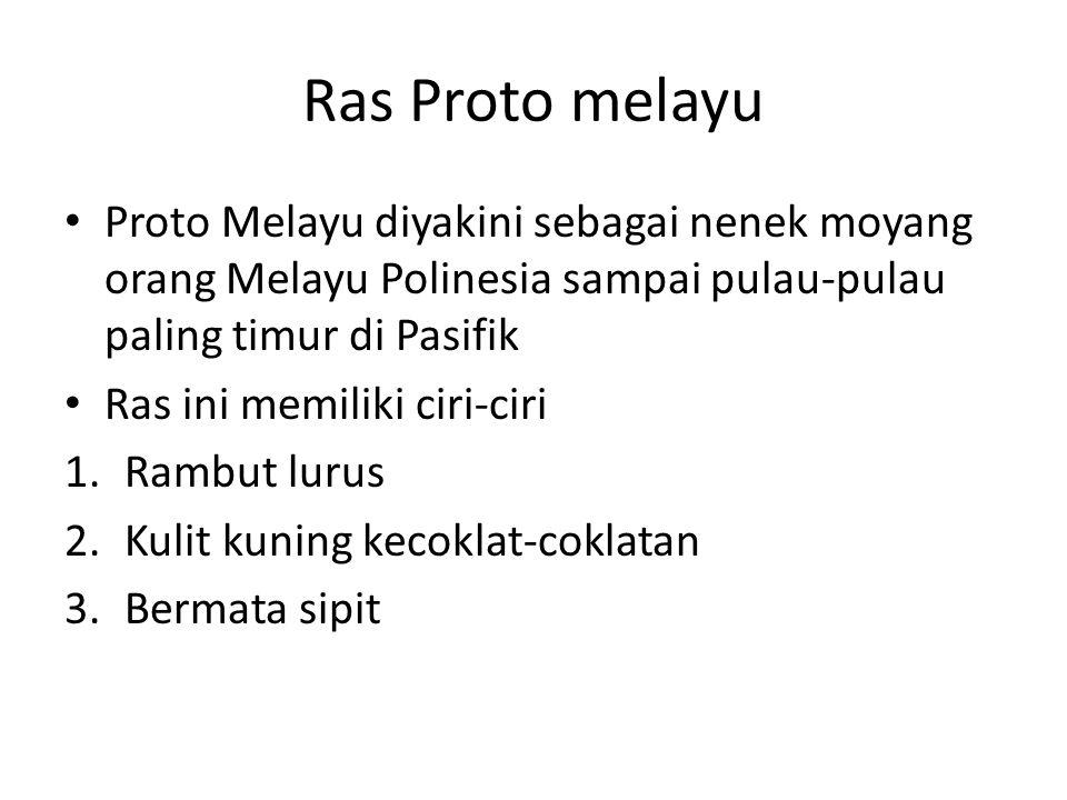 Ras Proto melayu Proto Melayu diyakini sebagai nenek moyang orang Melayu Polinesia sampai pulau-pulau paling timur di Pasifik.