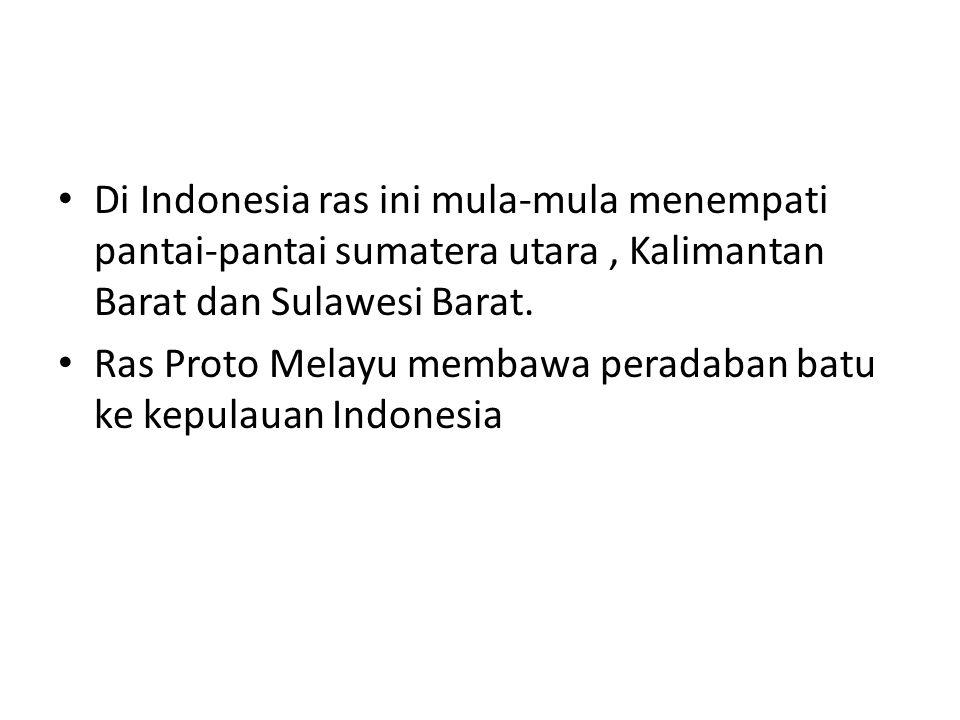 Di Indonesia ras ini mula-mula menempati pantai-pantai sumatera utara , Kalimantan Barat dan Sulawesi Barat.