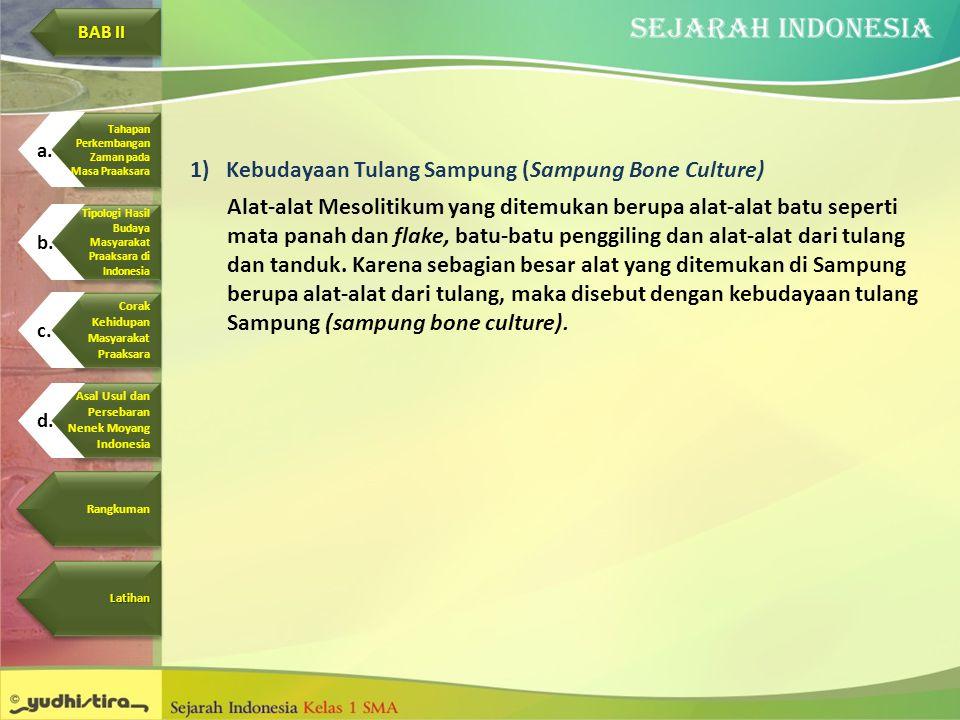 Kebudayaan Tulang Sampung (Sampung Bone Culture)