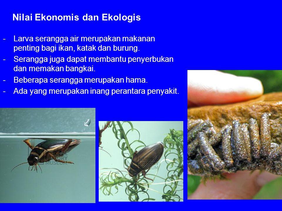 Nilai Ekonomis dan Ekologis
