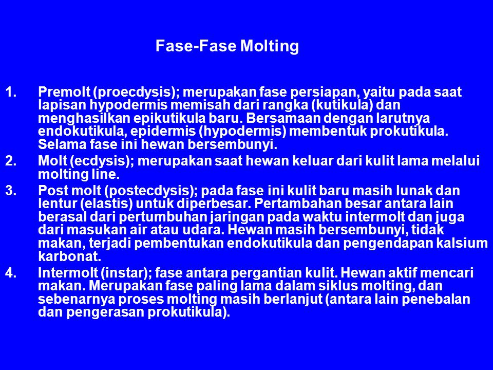Fase-Fase Molting