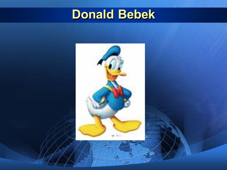Donald Bebek