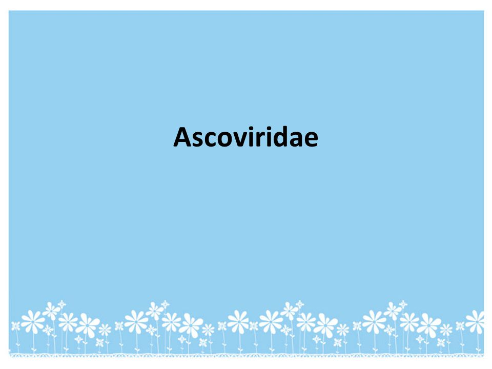 Ascoviridae