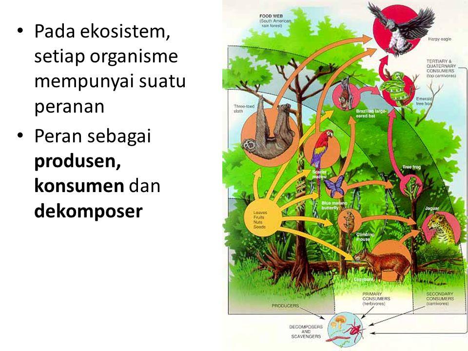 Pada ekosistem, setiap organisme mempunyai suatu peranan