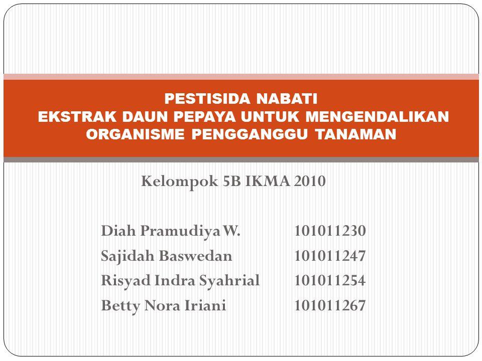 Kelompok 5B IKMA 2010 Risyad Indra Syahrial 101011254