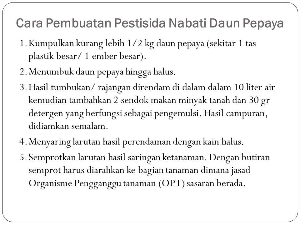 Cara Pembuatan Pestisida Nabati Daun Pepaya