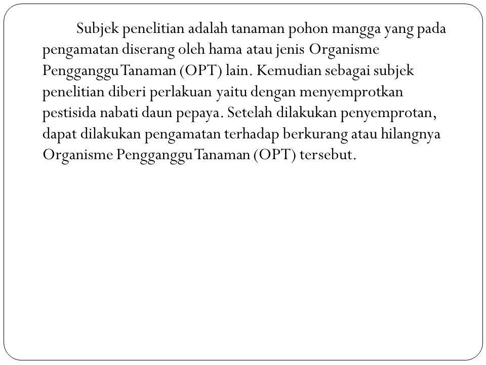Subjek penelitian adalah tanaman pohon mangga yang pada pengamatan diserang oleh hama atau jenis Organisme Pengganggu Tanaman (OPT) lain.