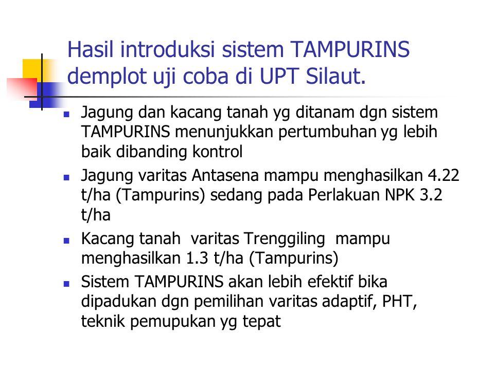 Hasil introduksi sistem TAMPURINS demplot uji coba di UPT Silaut.