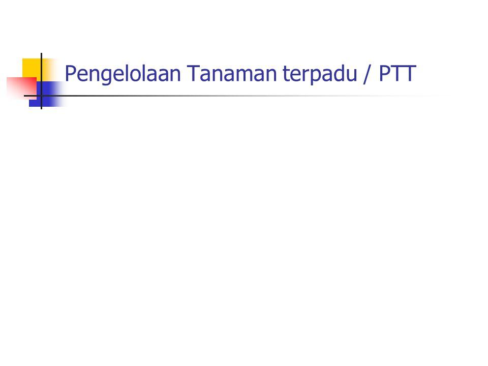 Pengelolaan Tanaman terpadu / PTT
