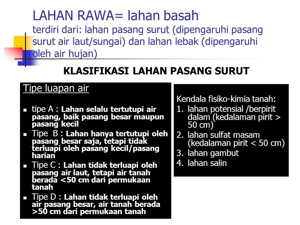 LAHAN RAWA= lahan basah terdiri dari: lahan pasang surut (dipengaruhi pasang surut air laut/sungai) dan lahan lebak (dipengaruhi oleh air hujan)