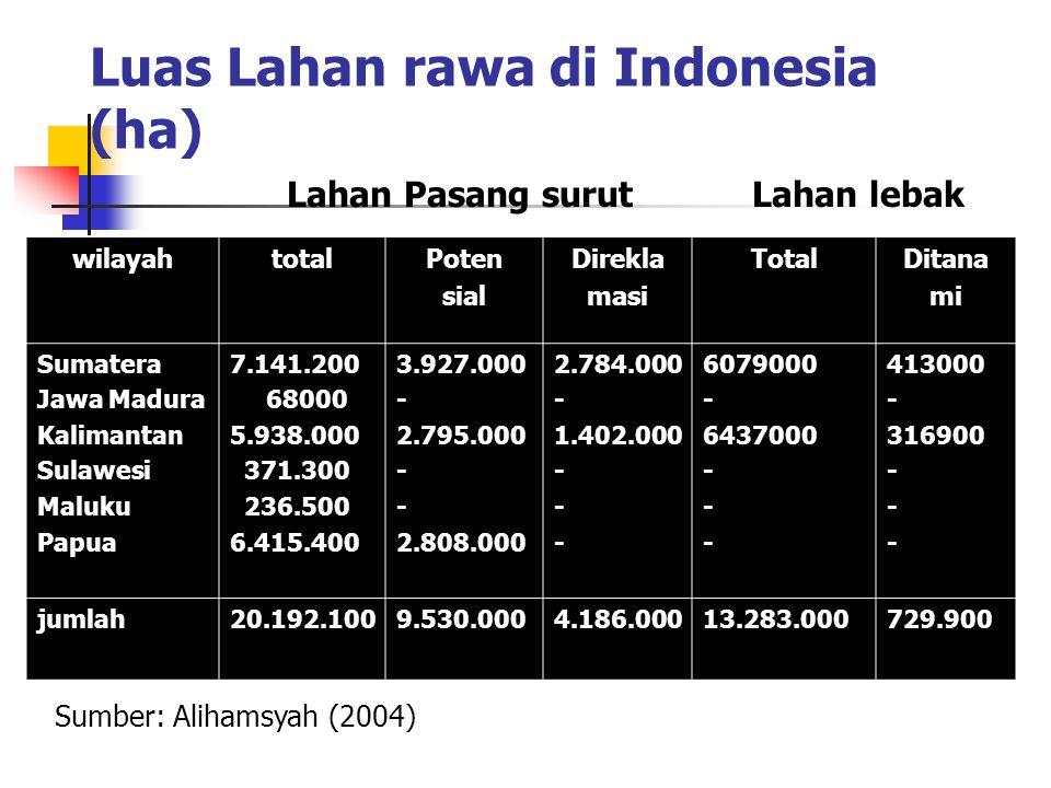 Luas Lahan rawa di Indonesia (ha)