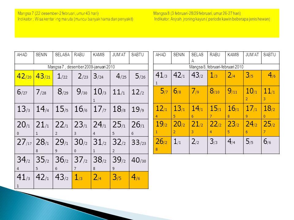 Mangsa 7 (22 desember-2 februari, umur 43 hari) Mangsa 8 (3 februari-28/29 februari, umur 26-27 hari)