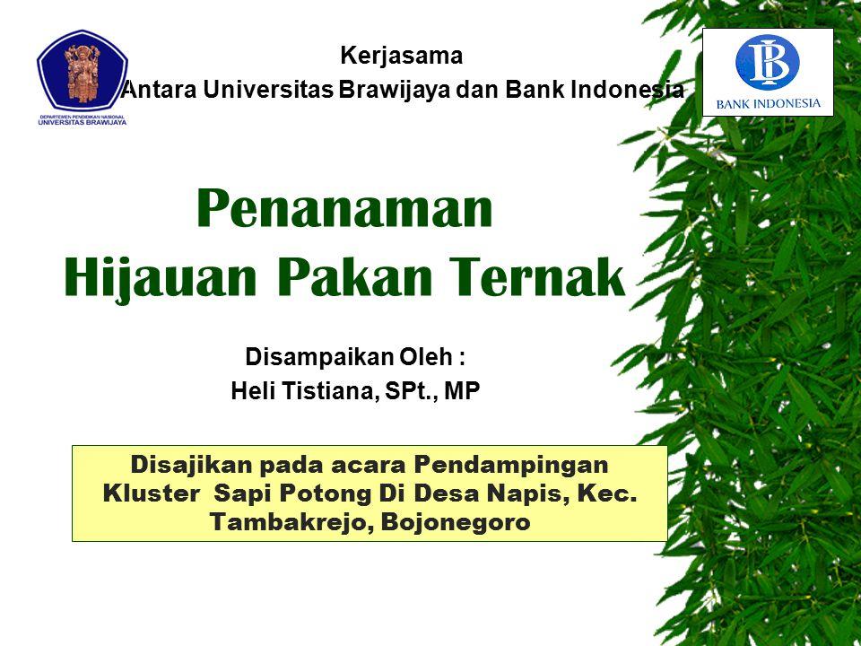 Kerjasama Antara Universitas Brawijaya dan Bank Indonesia