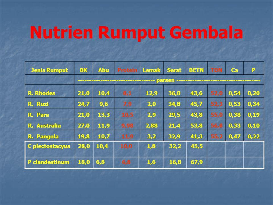 Nutrien Rumput Gembala