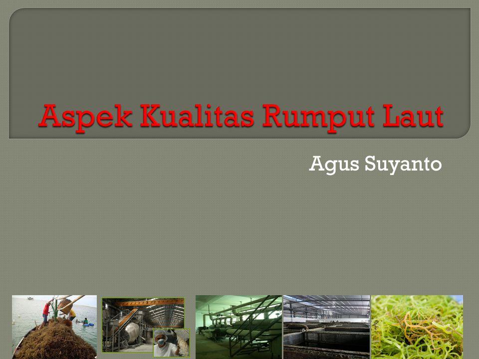 Aspek Kualitas Rumput Laut