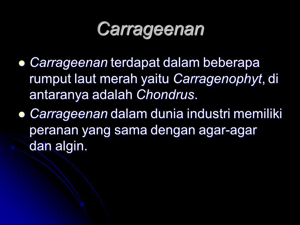 Carrageenan Carrageenan terdapat dalam beberapa rumput laut merah yaitu Carragenophyt, di antaranya adalah Chondrus.