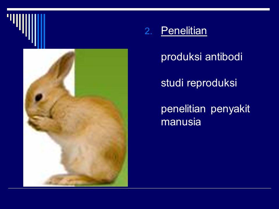 Penelitian produksi antibodi studi reproduksi penelitian penyakit manusia