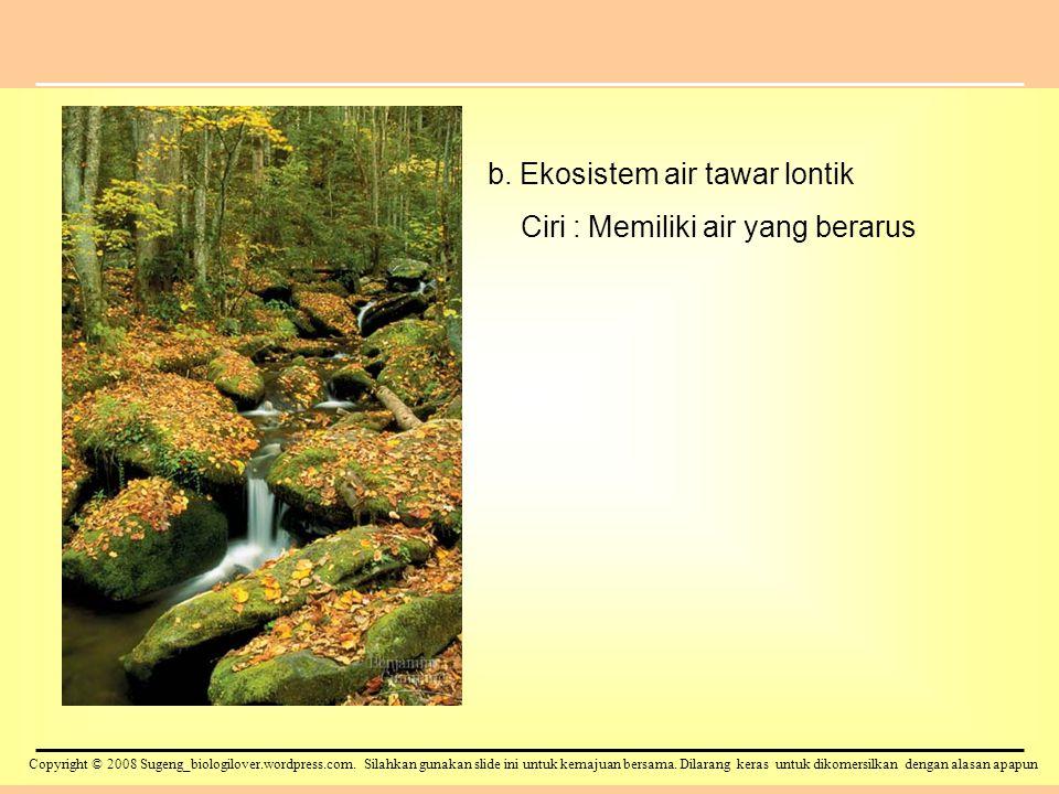 b. Ekosistem air tawar lontik