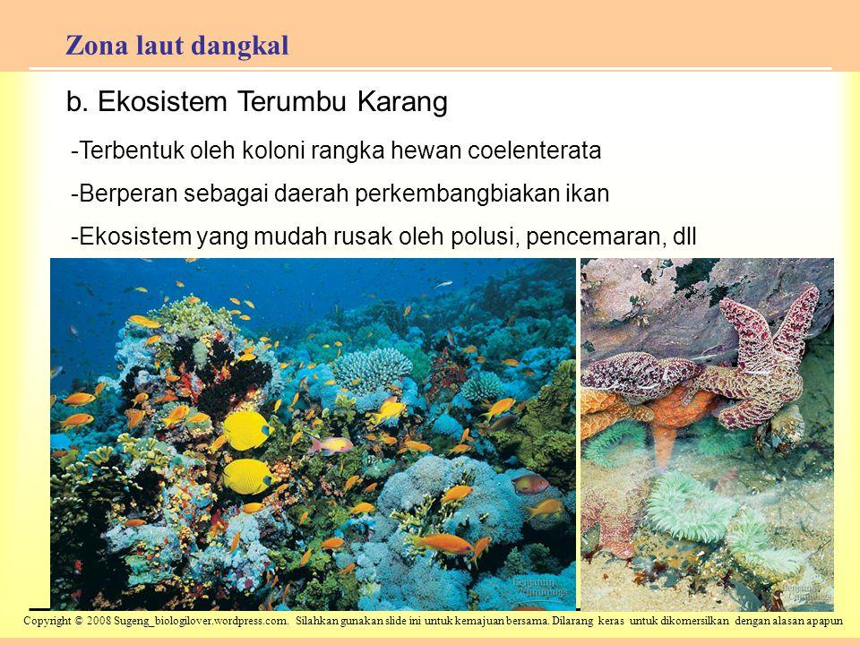 b. Ekosistem Terumbu Karang