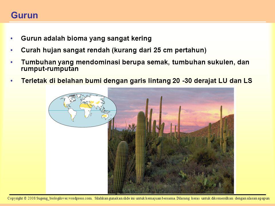 Gurun Gurun adalah bioma yang sangat kering