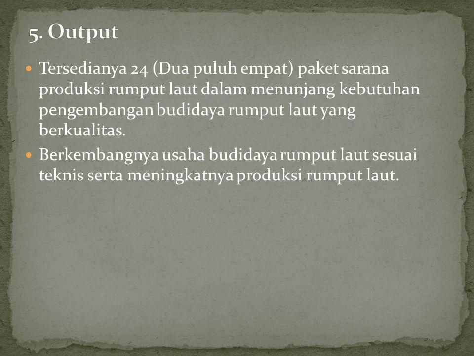 5. Output