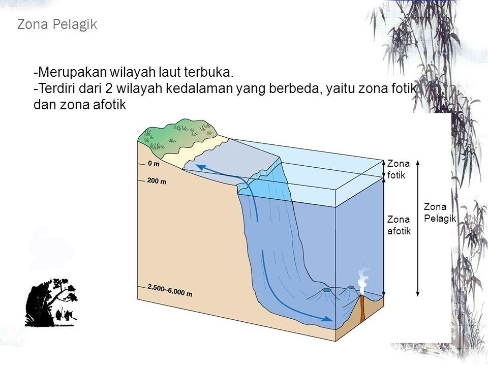 Zona Pelagik Merupakan wilayah laut terbuka.
