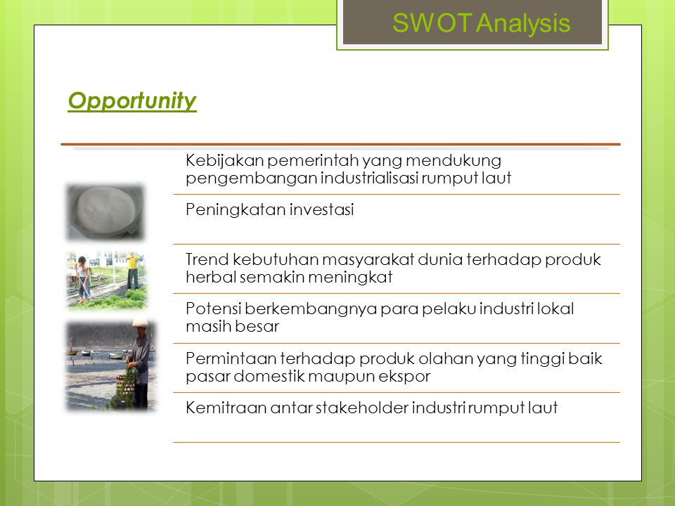 SWOT Analysis Opportunity