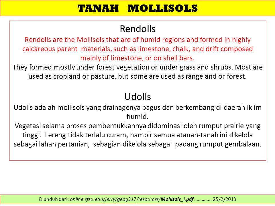 TANAH MOLLISOLS Rendolls Udolls