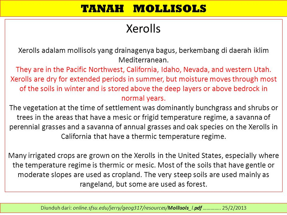 Xerolls TANAH MOLLISOLS
