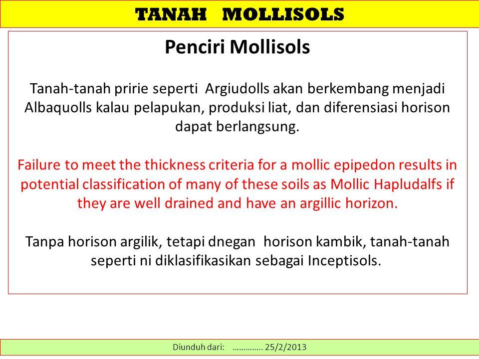 Penciri Mollisols TANAH MOLLISOLS