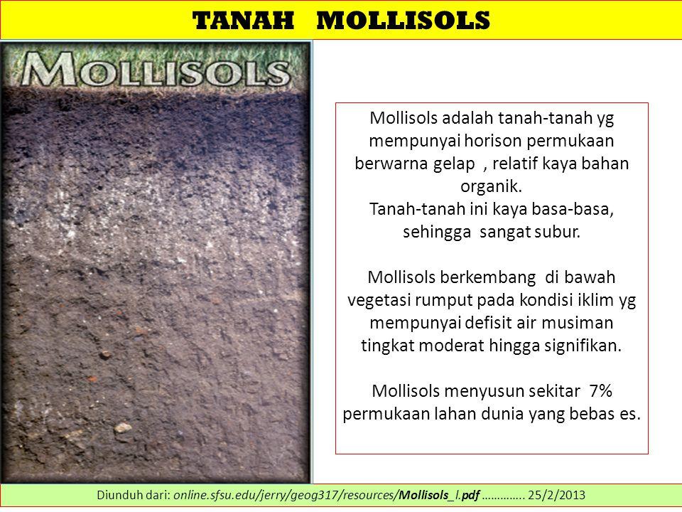 TANAH MOLLISOLS Mollisols adalah tanah-tanah yg mempunyai horison permukaan berwarna gelap , relatif kaya bahan organik.